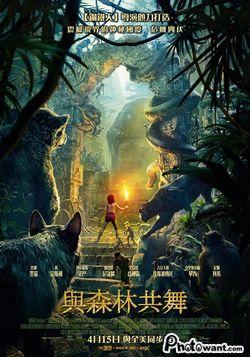 與森林共舞_JUNGLE BOOK 3D_電影劇照